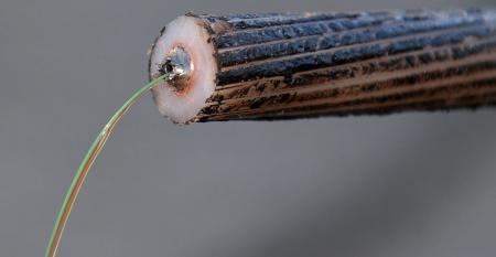 Fiber strands of the SEA-ME-WE 5 submarine cable, connecting Southeast Asia, Middle East, and Western Europe