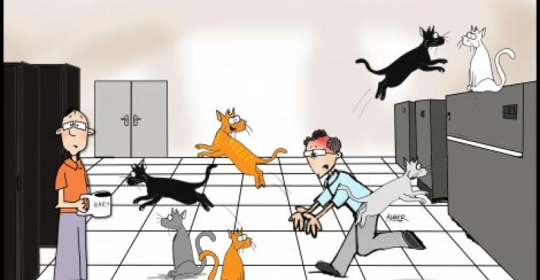 Friday Funny: Herding Cats on the Raised Floor