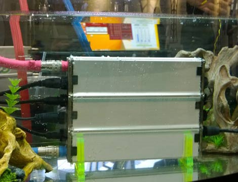 LiquidCool Solutions shows off servers immersed in a tank of liquid coolant at the SC14 conference in New Orleans. (Photo: Rich Miller)